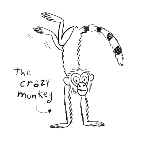 Kasper the Crazy Monkey