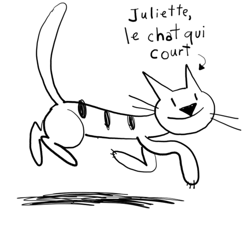 Juliette, le chat qui court