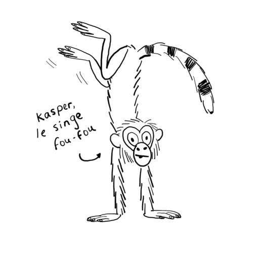 Kasper, le singe fou-fou