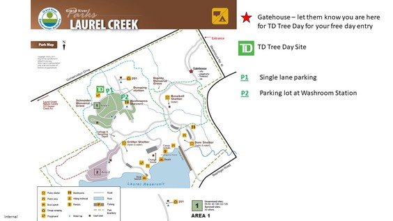 Td tree day laurel creek site map