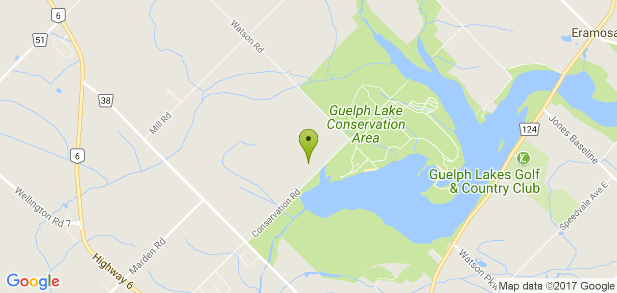Guelph Lake Rotary Forest