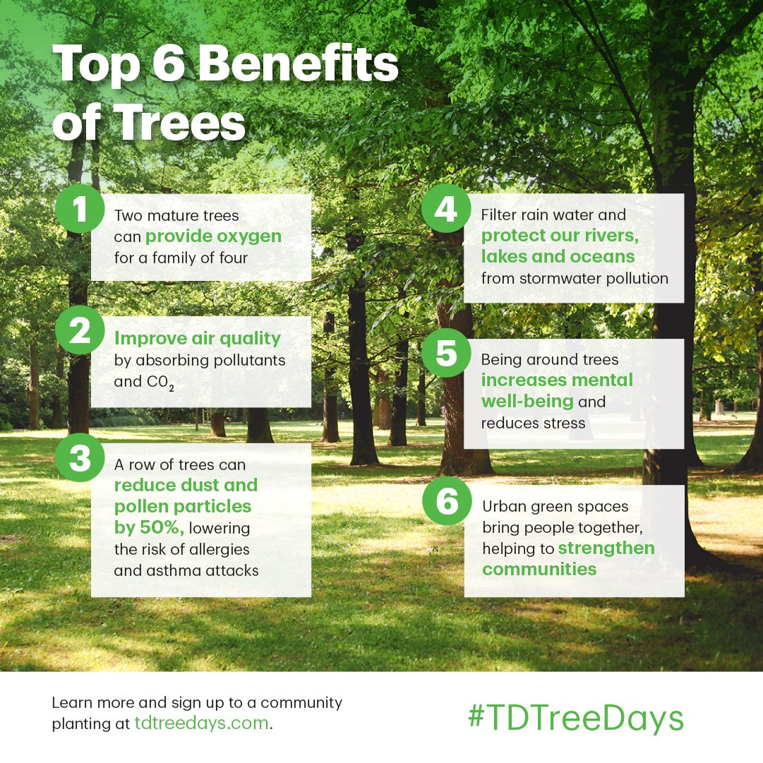 td tree days help green where you live
