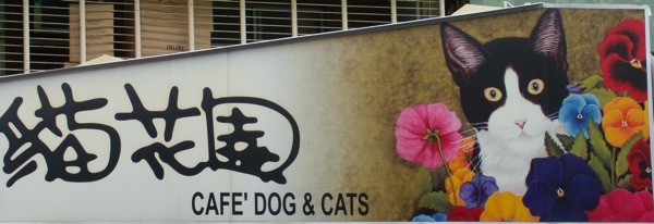 Cafe dog and cats logo