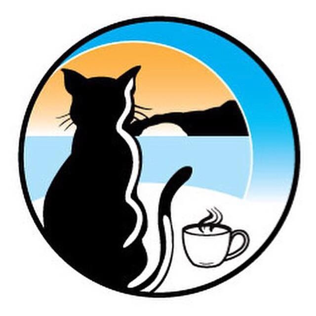 Surfcats cafe and adoption