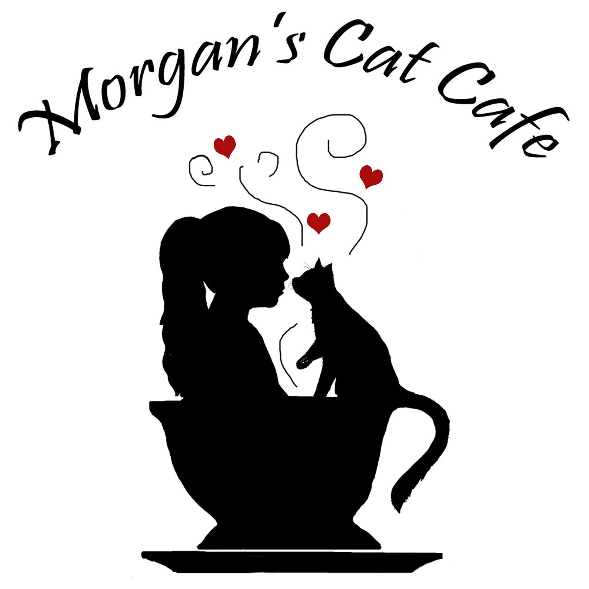 Morgans cat cafe