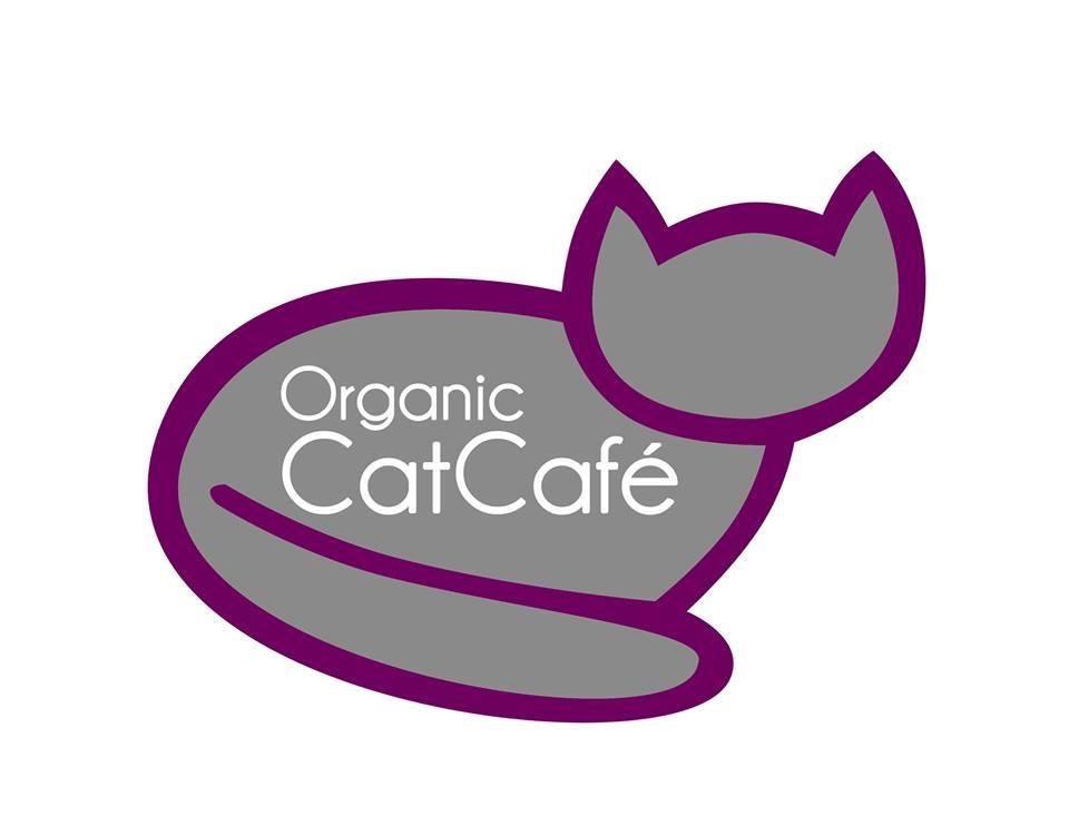 Organic cat cafe