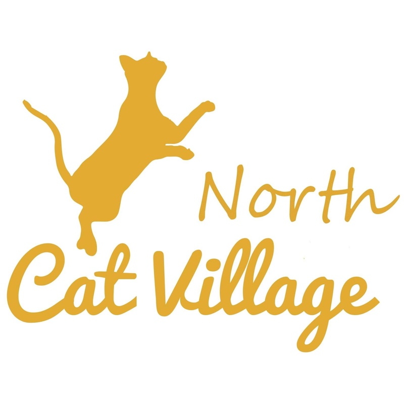 Cat village north