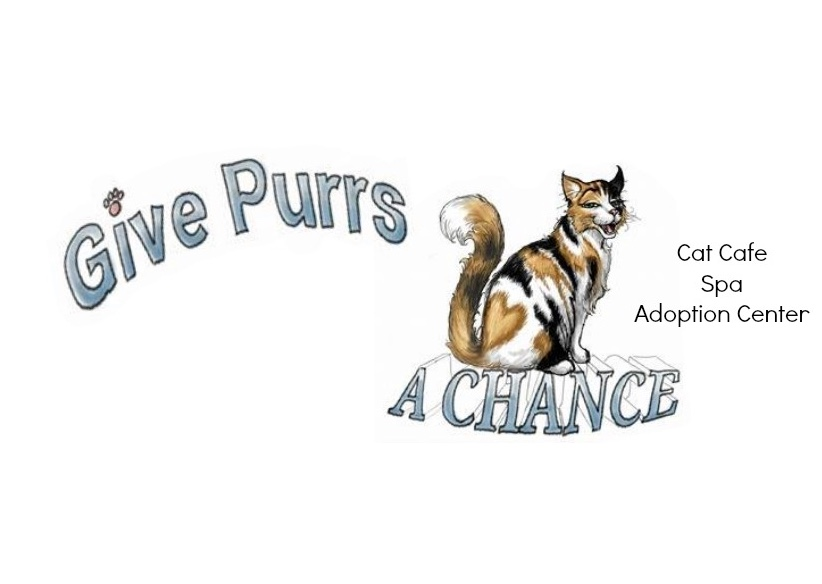 Give purrs a chance
