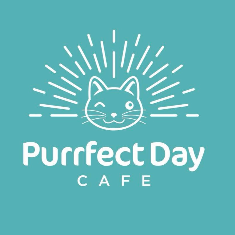 Purrfect day cafe