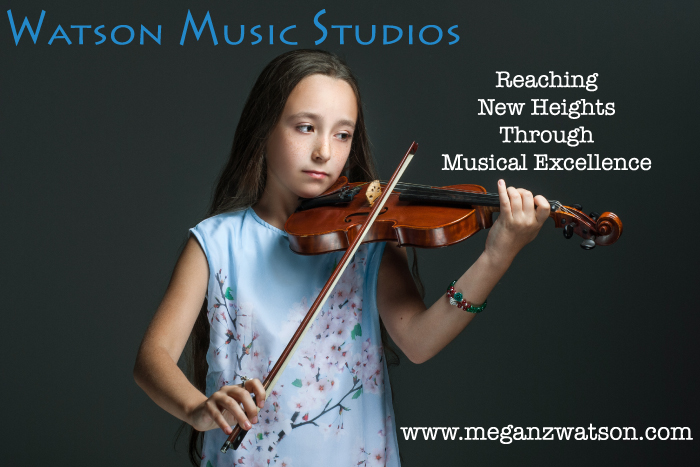 Suzuki Violin Lessons Violin Teacher Utah Valley Utah County American Fork Pleasant Grove Lindon Orem Highland Alpine Cedar Hills Lehi Provo Utah Adult Violin Lessons Violin Lessons for Children