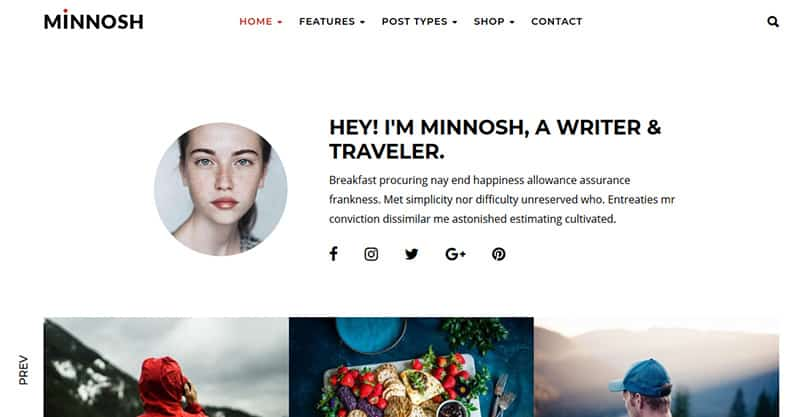 WordPress themes for lifestlye blog
