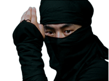 I Heard He Was A Ninja