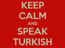 Please Speak Turkish