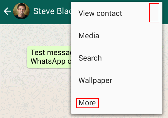 Access extra WhatsApp chat options