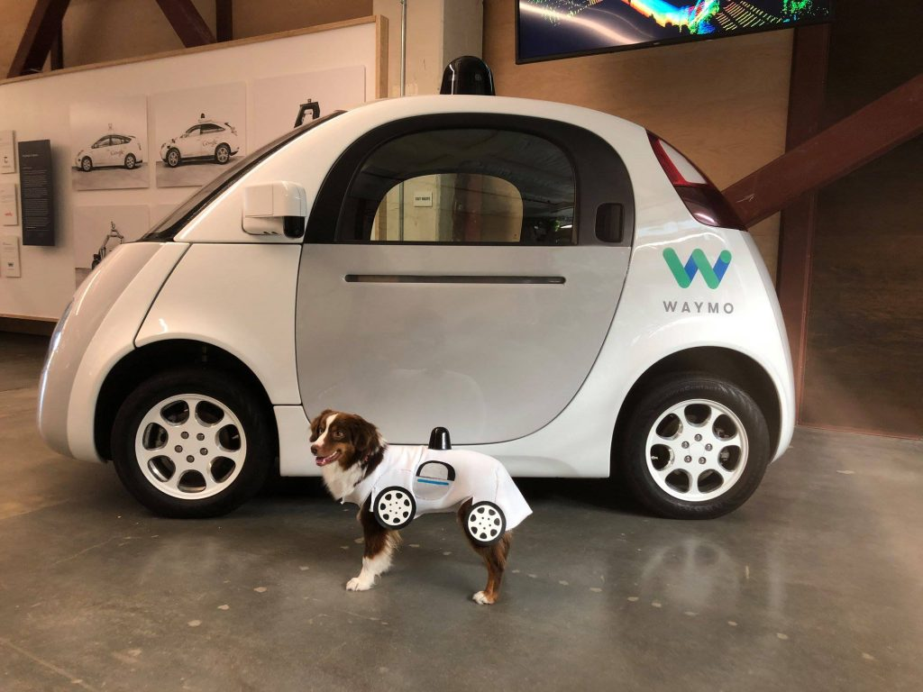 Waymo Self Driving Car and a dog