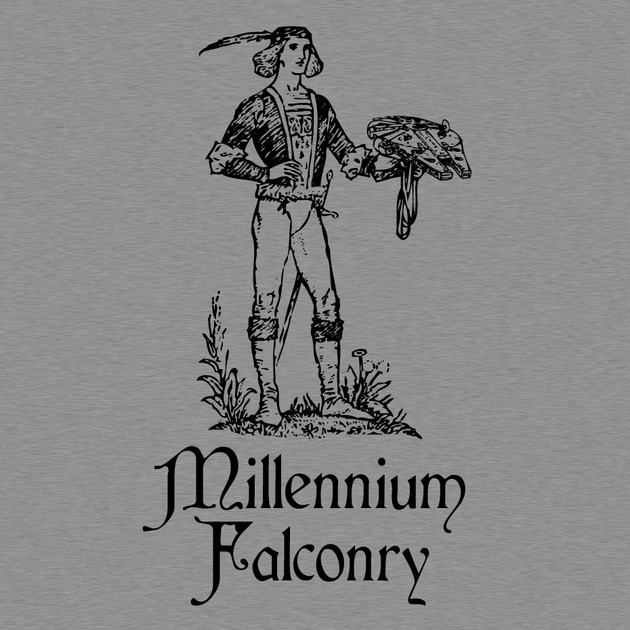 Millenniumfalconry-preview_display