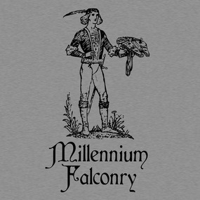 Millenniumfalconry-preview_grid