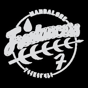 Mandalorefreelancers-preview_32c9b3e8-31d1-4f18-a550-a55c53e69652_grid