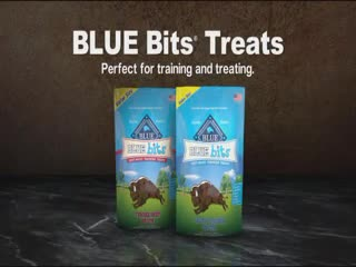 Blue Buffalo Dog Food campaigns first seen Nov 2017.