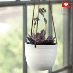 Scribble Hanging Planter by Lisa Jones