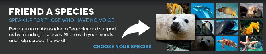 Friend a Species