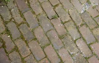 Brick patios 0020