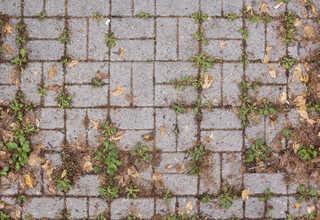 Brick patios 0030