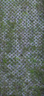 brick-patios_0039 texture