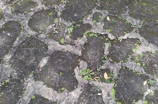 brick-patios_0040 texture