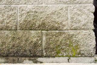Old brick 0013