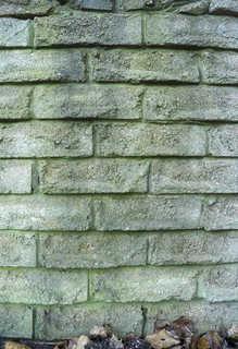 Old brick 0014