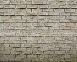 Rough brick 0021