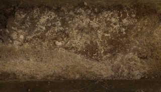 Rough brick 0042