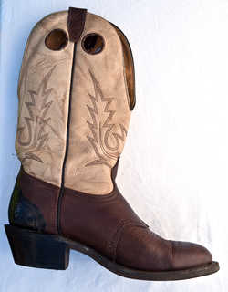 Boots and shoes 0004