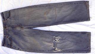 Pants and shorts 0036