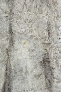 Dirty concrete 0023