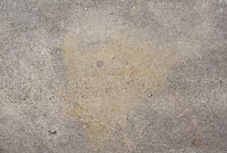 Dirty concrete 0055
