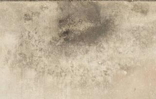 dirty-concrete_0111 texture