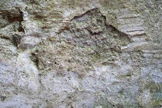 Mossy concrete 0002