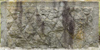 Mossy concrete 0012