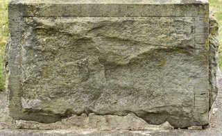 Mossy concrete 0013