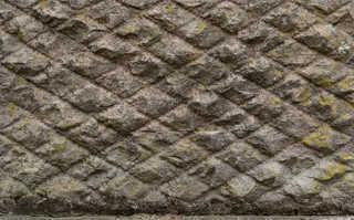 Mossy concrete 0016