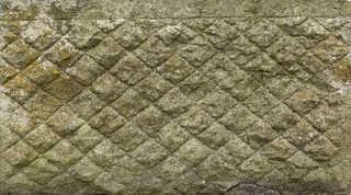 Mossy concrete 0018