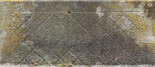 Mossy concrete 0021