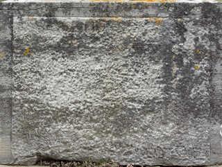 Mossy concrete 0022