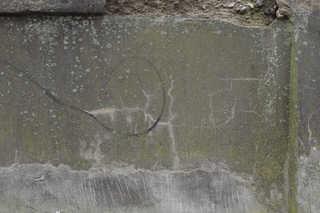Mossy concrete 0025