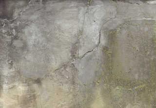 Mossy concrete 0033
