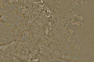 Painted concrete 0012
