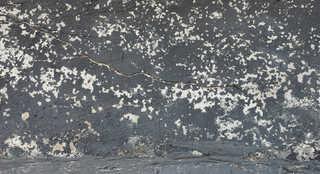 Painted concrete 0014