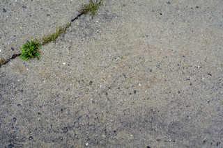 Smooth concrete 0018